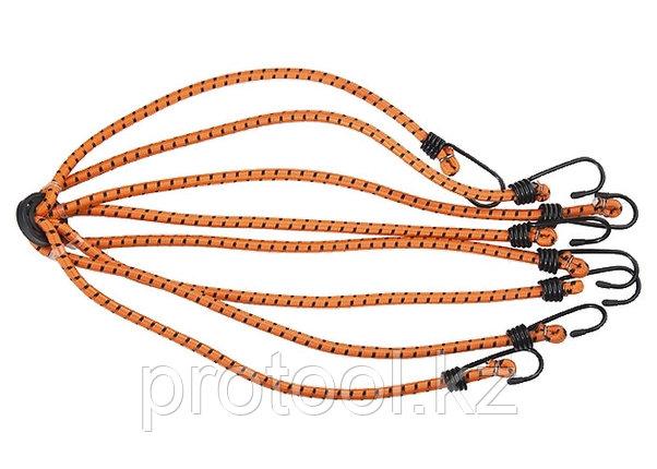 Паук багажный усиленный,  8 крюков// STELS, фото 2
