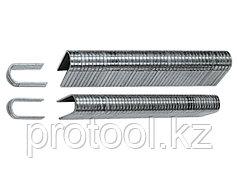 Скобы, 12 мм, для кабеля, закаленные, для степлера 40901, тип 36, 1000 шт// MATRIX MASTER
