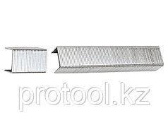 Скобы, 10 мм, для мебельного степлера, тип 53, 1000 шт.// Sparta