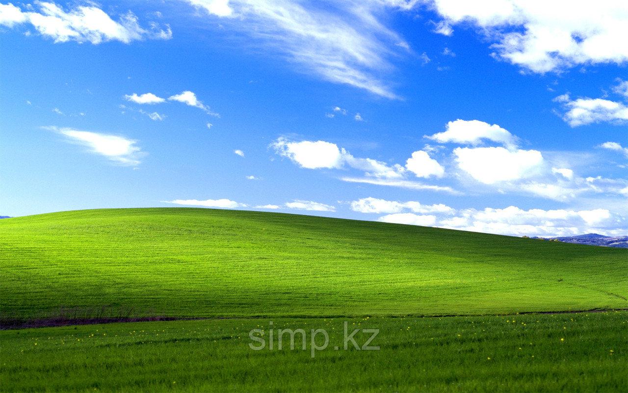 Установить Windows XP