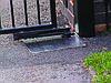 FROG (Came - Италия) до 800 кг. подземная (скрытая) установка