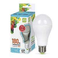 Лампа светодиодная LED-A60-standard 20Вт 160-260В E27 4000К 1800лм ASD 4690612004204