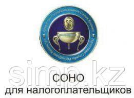 Установка СОНО на macbook Алматы.