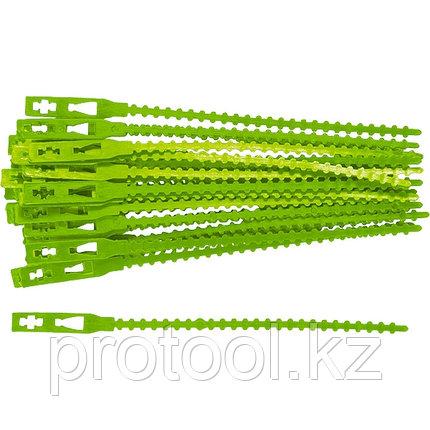 Подвязки для садовых растений, 13 см, пластиковые, 50 шт// PALISAD, фото 2
