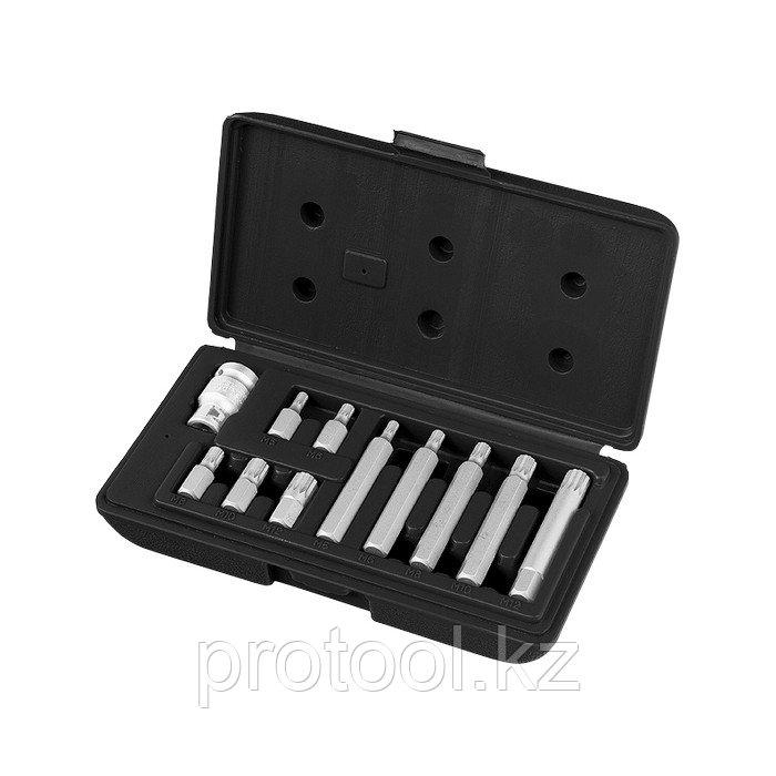 Набор бит SPLINE,  хвостовик-шестигранник 1  1/2'', CrV,10 мм, 11 пред// STELS