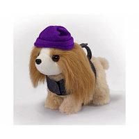 Плюшевая собачка Гаванская болонка Chi Chi Love 5894137, Simba, фото 1