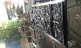 Ворота иранские, фото 5