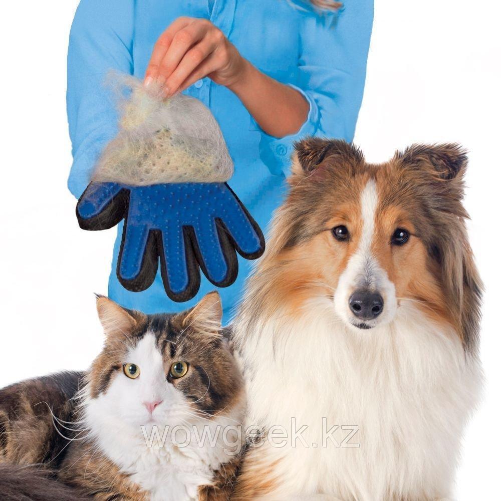 Перчатка для вычесывания шерсти домашних животных Тру Тач (True Touch)