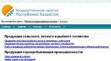 Настройка портала госзакупок, Самрук-Казына, установка ЭЦП,, фото 2