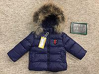 Куртка gucci, фото 1