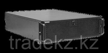 IP видеосервер Domination IP-32-12 MDR, фото 2