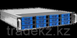 IP видеосервер Domination IP-24-12 HS