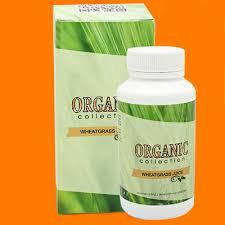 Wheatgrass (витграсс) – витграсс для похудения