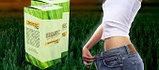 Wheatgrass (витграсс) – витграсс для похудения, фото 2