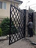 Ворота с экраном из металлического листа, фото 2