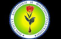 Лучшие парки Алматы для скандинавской ходьбы