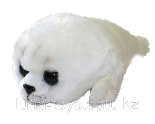 Крошка-тюлень