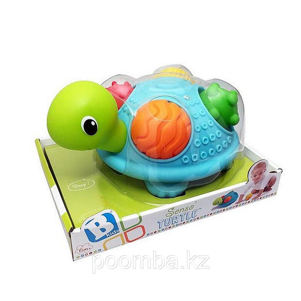 """Развивающая игрушка""""Sensory""""-Черепашка"""