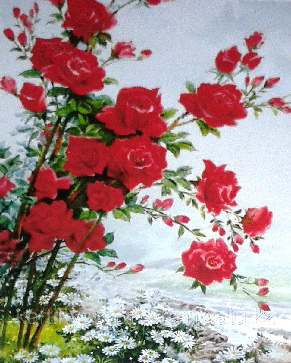 "Картина по номерам ""Плетущаяся роза"""