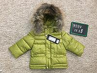 Куртки Philipp plein, фото 1