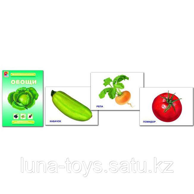 Овощи.Демонстрационный материал (Настольно-печатная игра)
