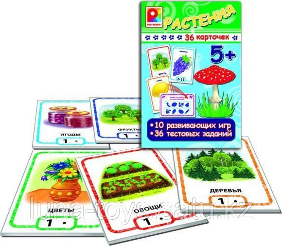 Игры с карточками. Растения С-912