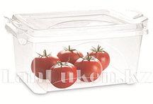 Контейнер Star Box 2,5 литров 30051