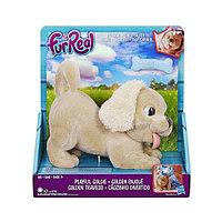 Furreal Friends Пушистый друг щенок Голди, фото 1