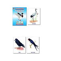Перелетные птицы.Демонстрационный материал (Настольно-печатная игра)