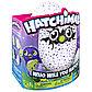 Интерактивная игрушка Hatchimals - Дракоша, синий / фиолетовый, фото 10