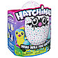 Интерактивная игрушка Hatchimals - Пингвинчик,пурпурный / зеленый, фото 8