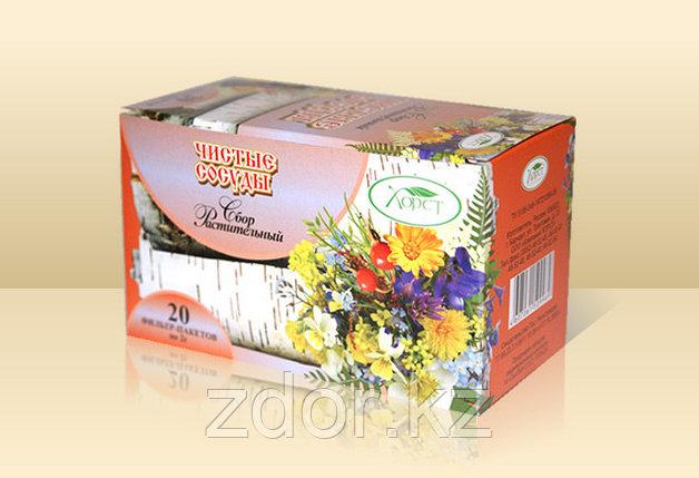 Чай чистые сосуды (восстанавливающий стенки кровеносных сосудов), фото 2