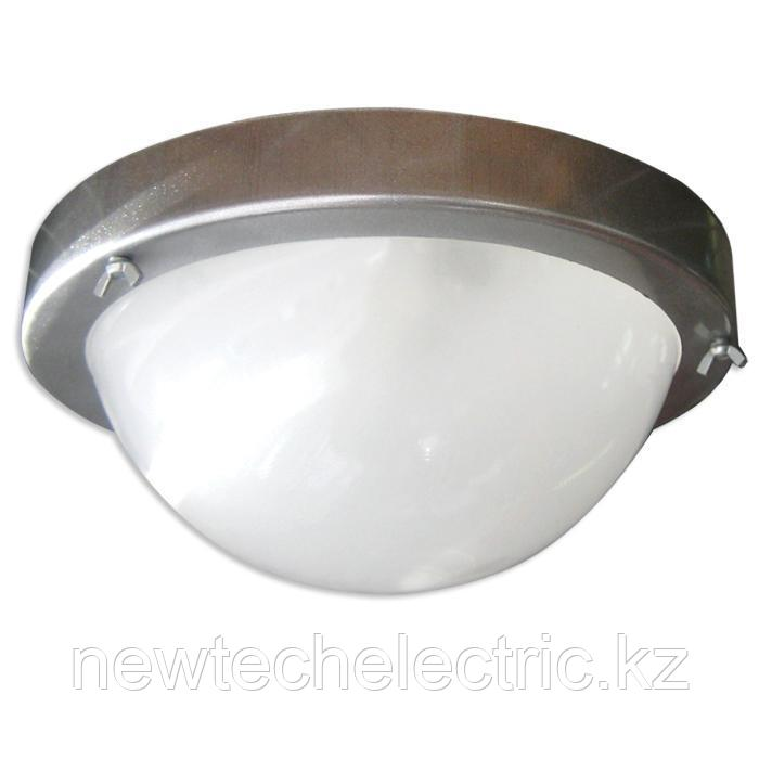 "Светильник ""Терма 1"" НББ 03-100-001 IP65 корпус серебро 1005500573"