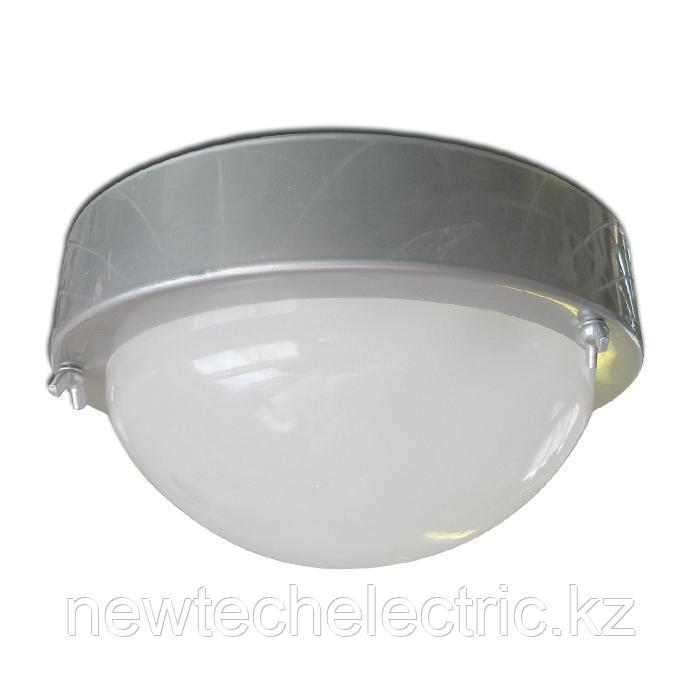"Светильник ""Терма 3"" НББ 03-60-003 IP65 корпус серебро 1005500583"