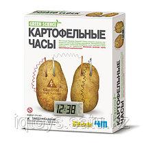 4M Картофельные часы