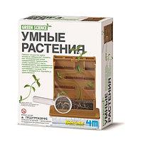 4M Умные растения, фото 1