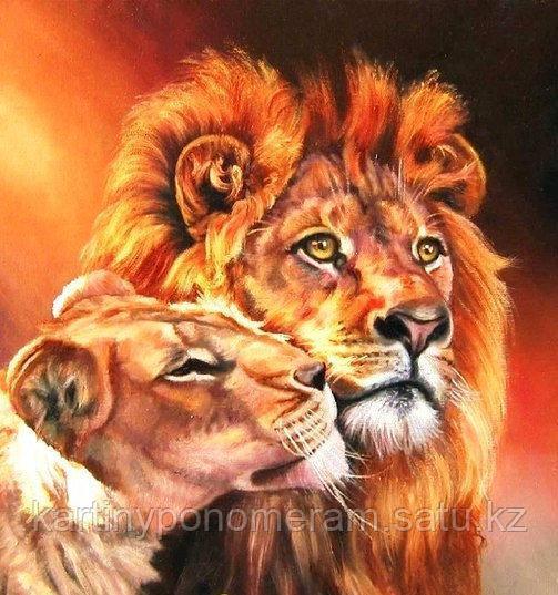"""Картины по номерам,  """"Влюбленные львы 30х40"""""""