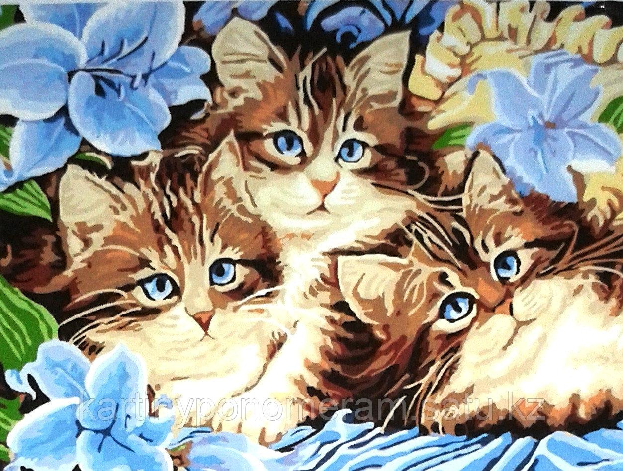 """Картины по номерам,  """"Котята в голубых цветах 30х40"""""""