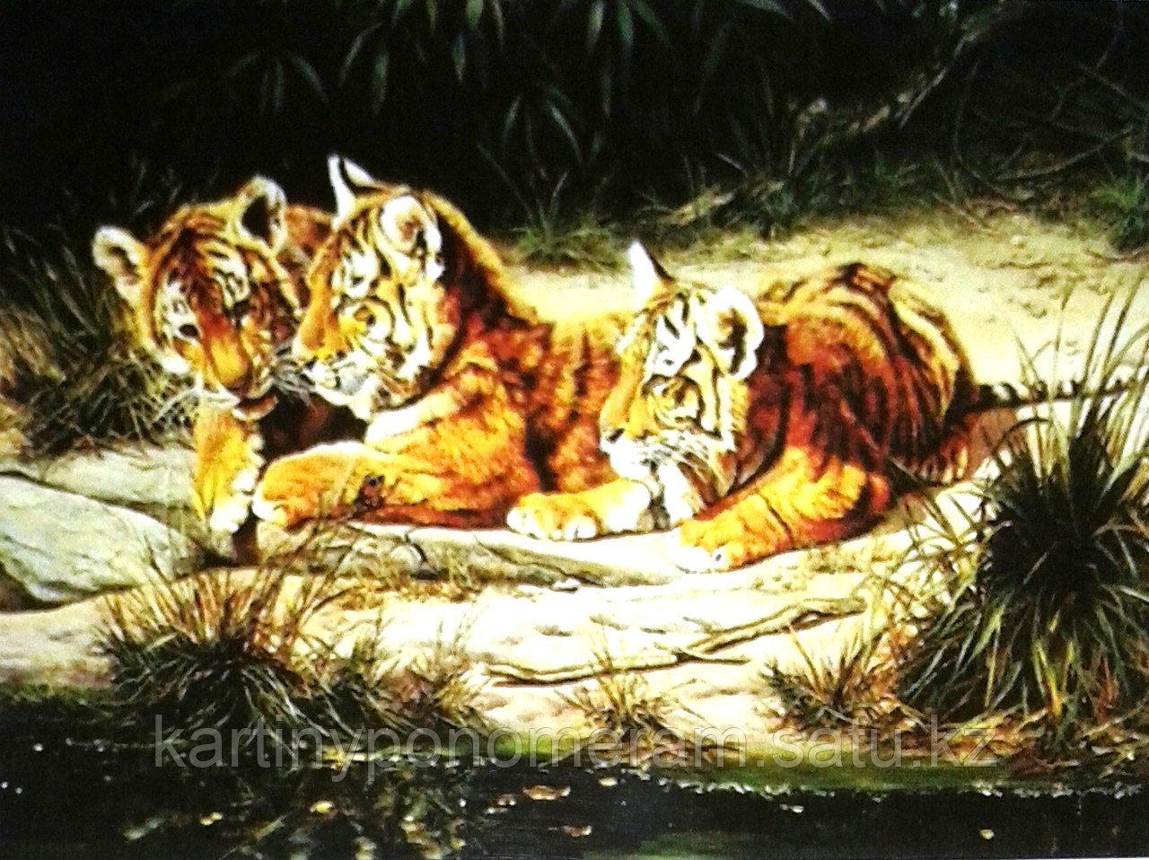 "Картины по номерам,  ""Три тигренка 30х40"""