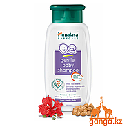 Детский шампунь (Gentle Baby Shampoo HIMALAYA), 100 мл.