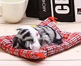 Игрушка спящий котенок, фото 2
