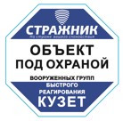 "Табличка-пиктограмма ""ОБЪЕКТ ПОД ОХРАНОЙ"" 100х100 мм."