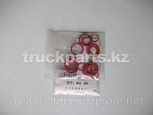 Ремкомплект плунжерной пары BQ 480 ДВС 4D22 (N485)