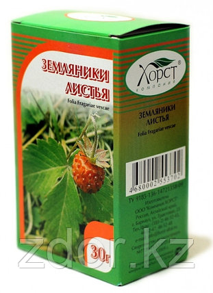 Земляники листья, 30 гр., фото 2