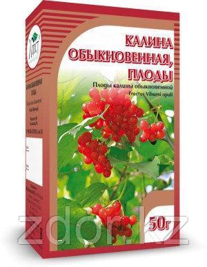 Калина, плоды 50 гр., фото 2