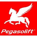 Аккумуляторные батареи для Pegasolift
