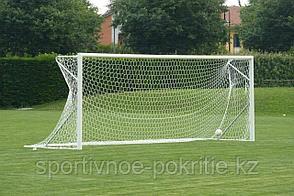 Футбольные ворота VIVISPORT