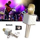 Колонка с функцией Караоке Микрофона Wster WS-858 (USB, microSD, AUX, Bluetooth), фото 2