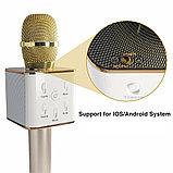 Колонка с функцией Караоке Микрофона Wster WS-858 (USB, microSD, AUX, Bluetooth), фото 3