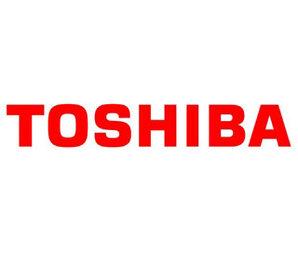 Шарниры для ноутбуков Toshiba